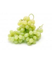 Виноград белый (кишмиш)