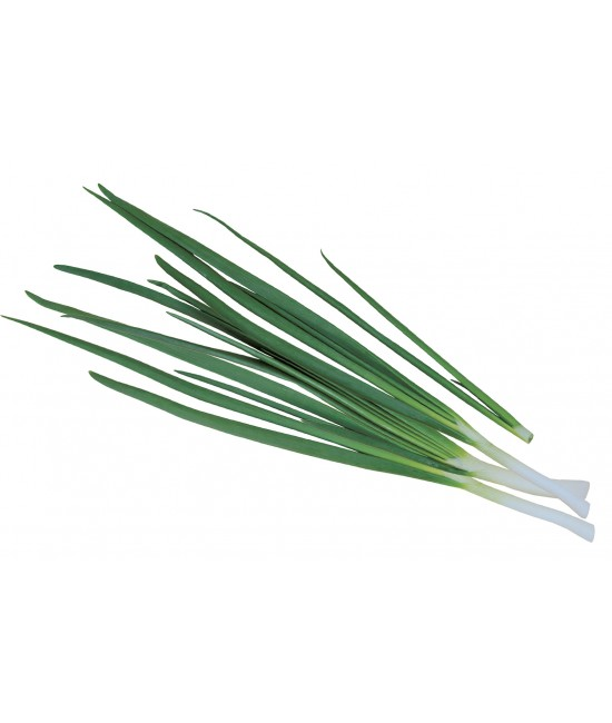 Лук зеленый 100г